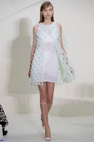 christian-dior-spring-2014-couture-03_115141729435