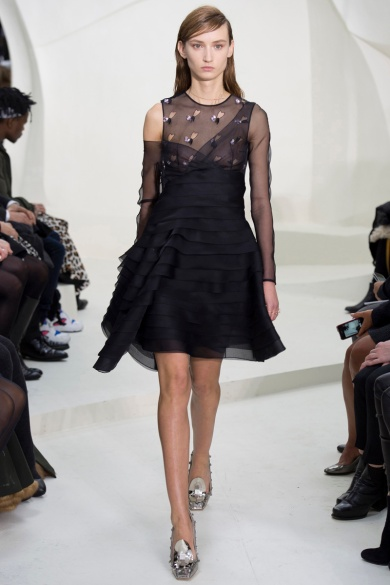christian-dior-spring-2014-couture-17_115203168498