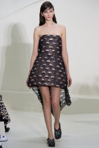 christian-dior-spring-2014-couture-23_115213697975