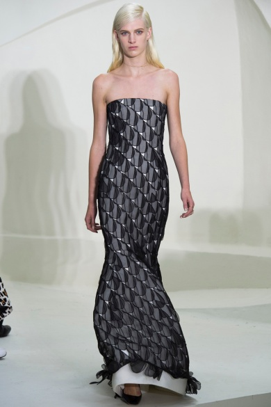 christian-dior-spring-2014-couture-43_115245377845